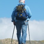 Nordic Walking - Ausdauertraining!