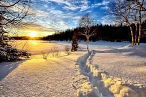Mit Licht auch in der kalten Jahreszeit gegen das Übergewicht vorgehen!